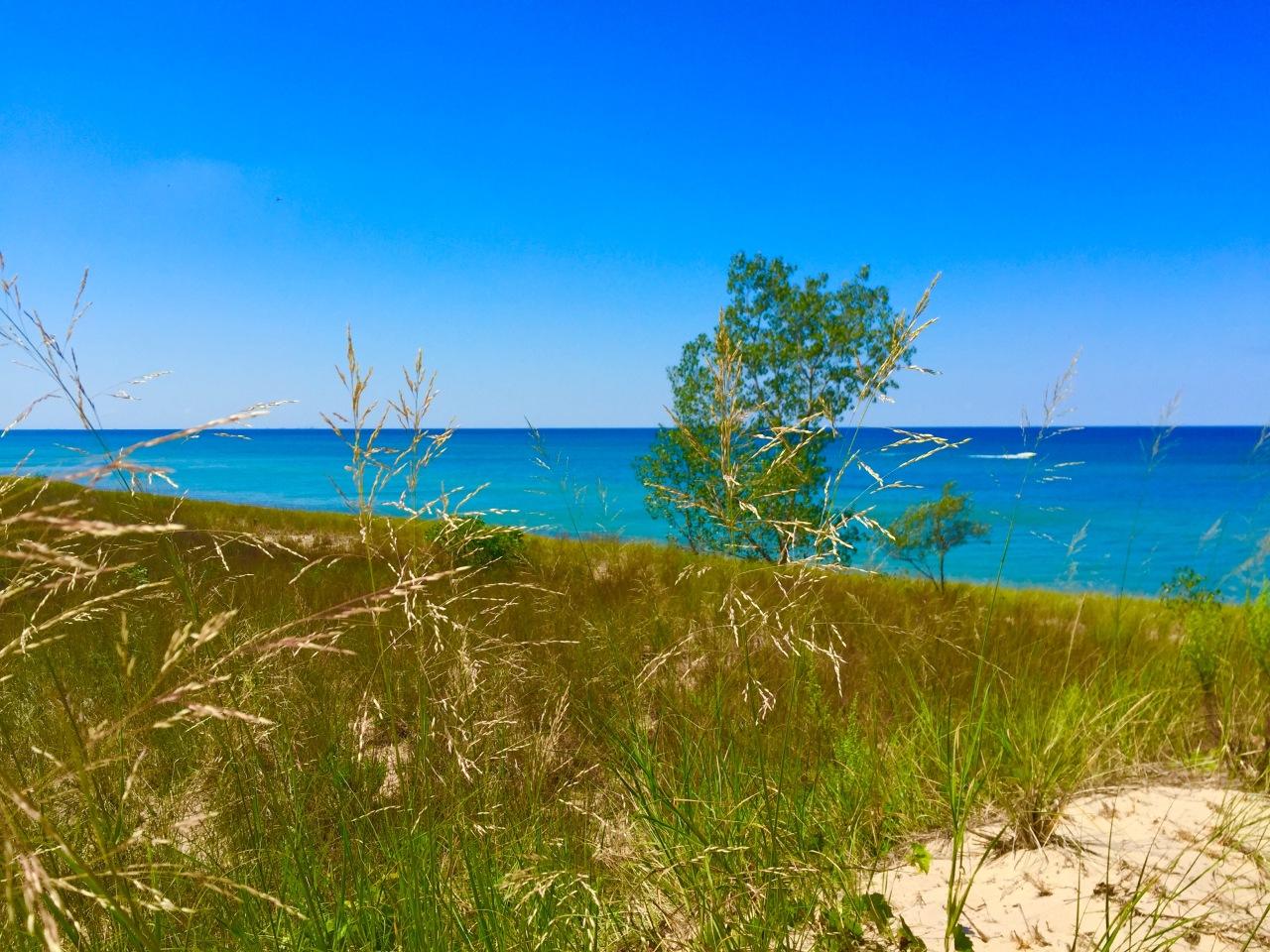 Indiana Dunes (5)