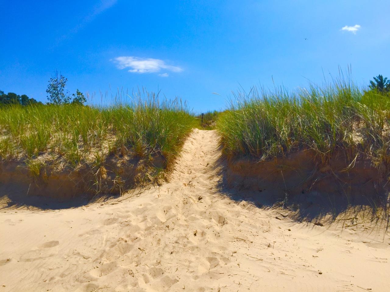 Indiana Dunes (8)