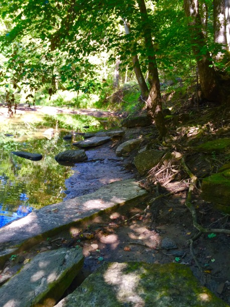 Hidden Springs (3)