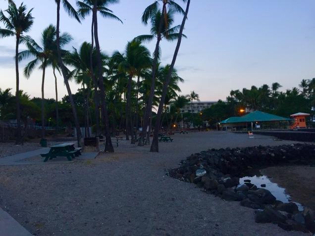 Hawaii (38)