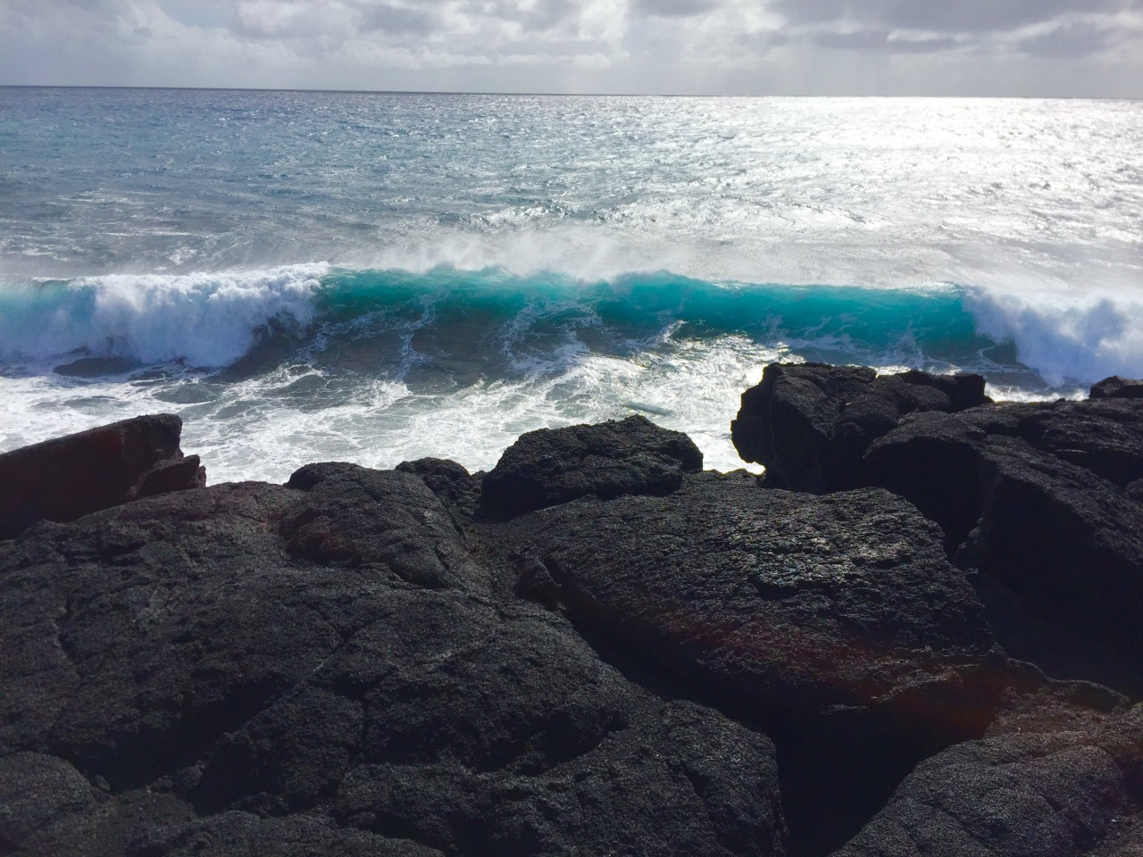 Hawaii (134)