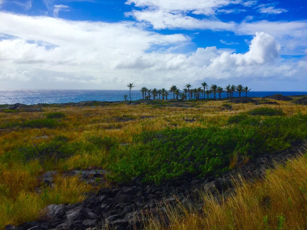 Hawaii – Day3