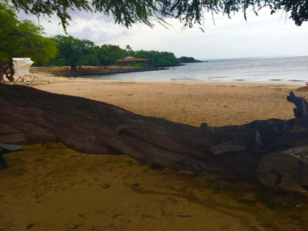 Hawaii (15)