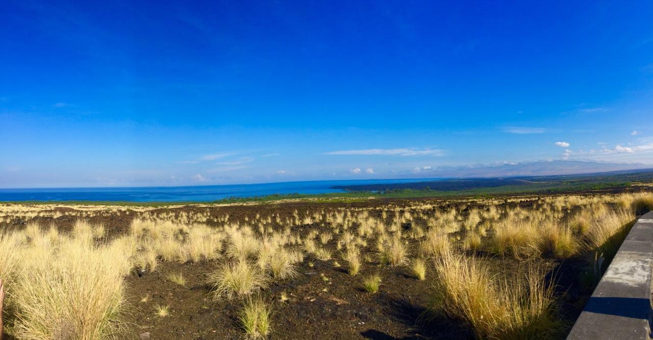 Hawaii (287)