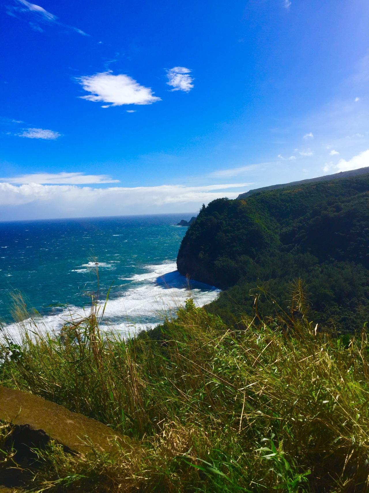 Hawaii (49)