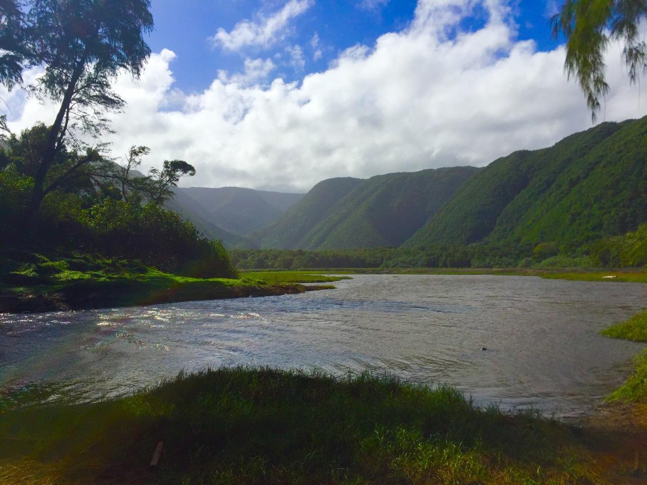 Hawaii (75)