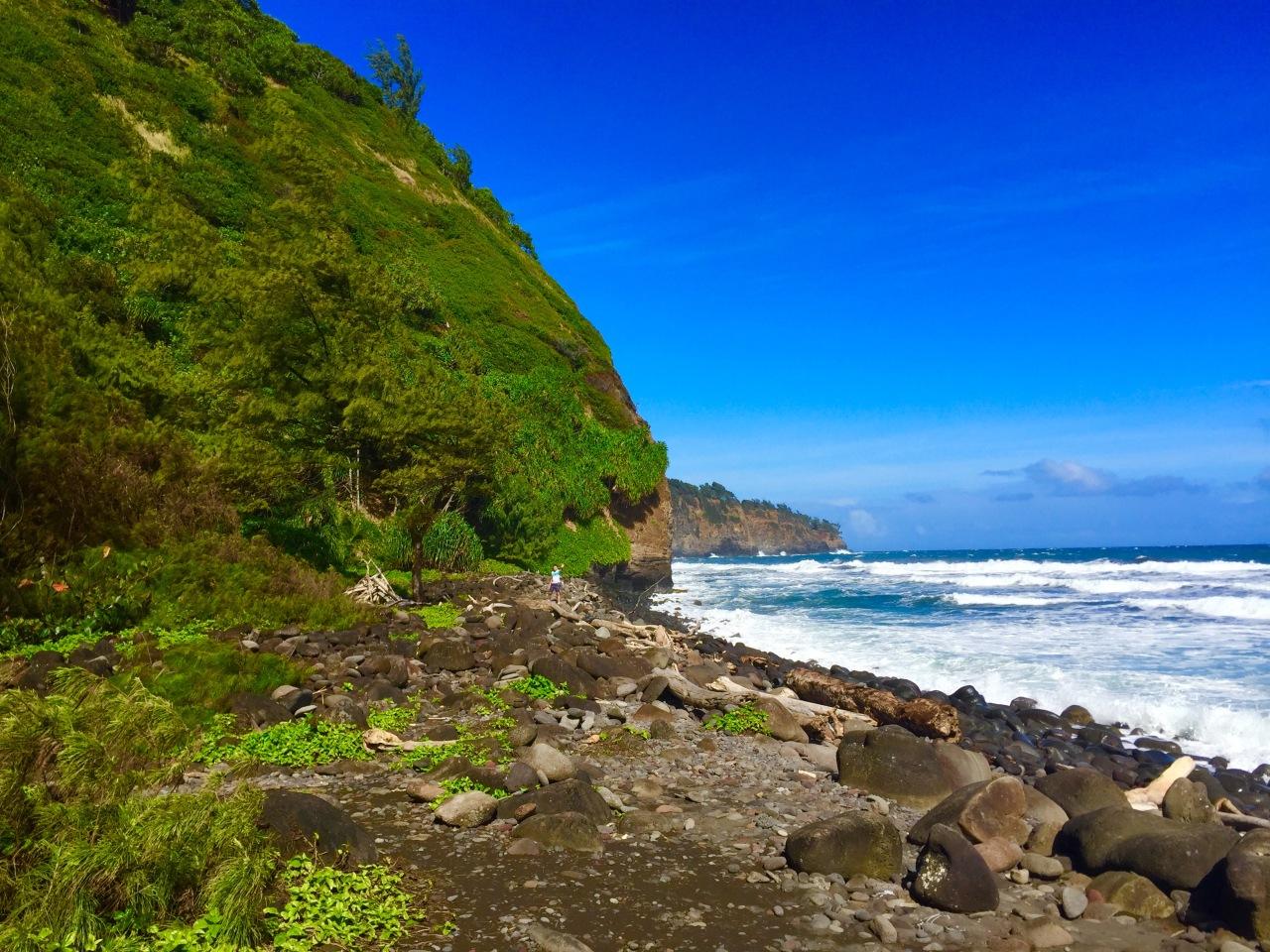 Hawaii (78)
