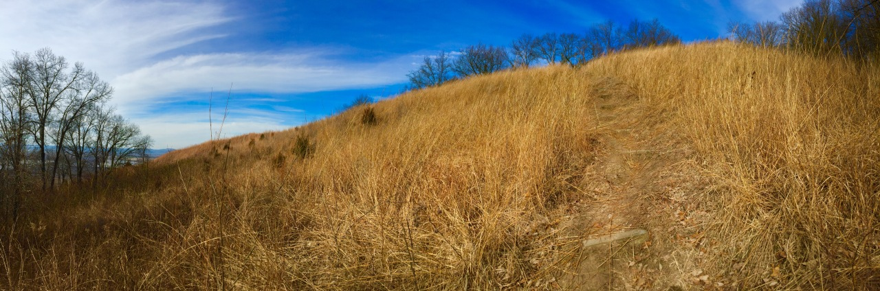 Fults Hill Prairie Nature Preserve – Illinois