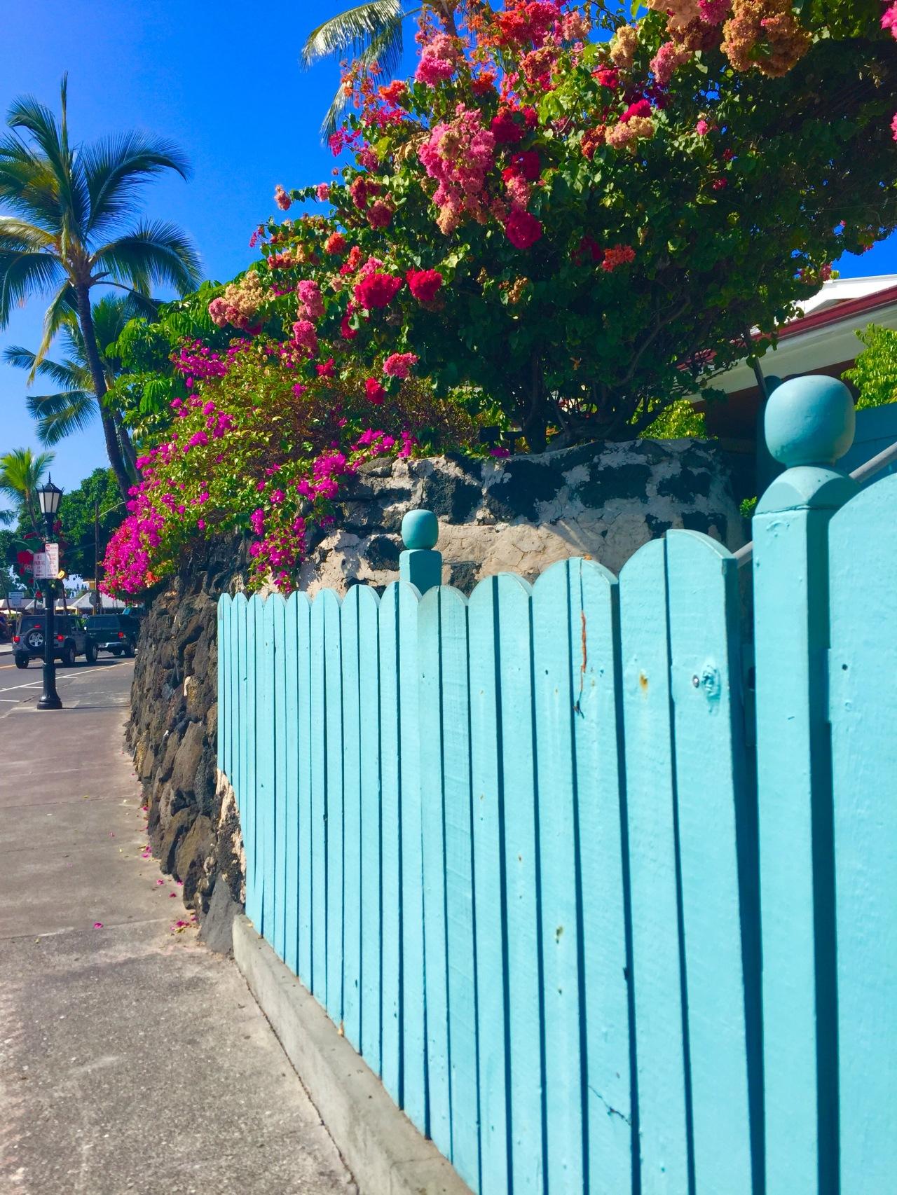 Hawaii (330)