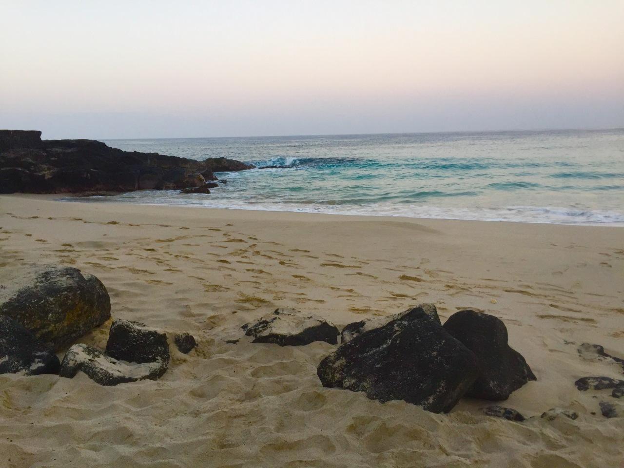 Hawaii (342)