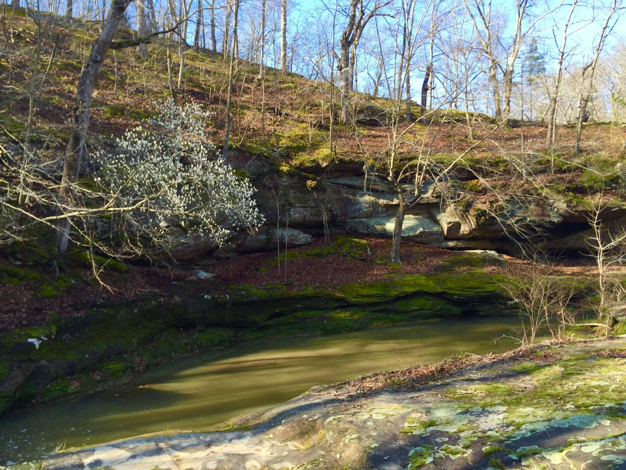 Piney Creek (34)