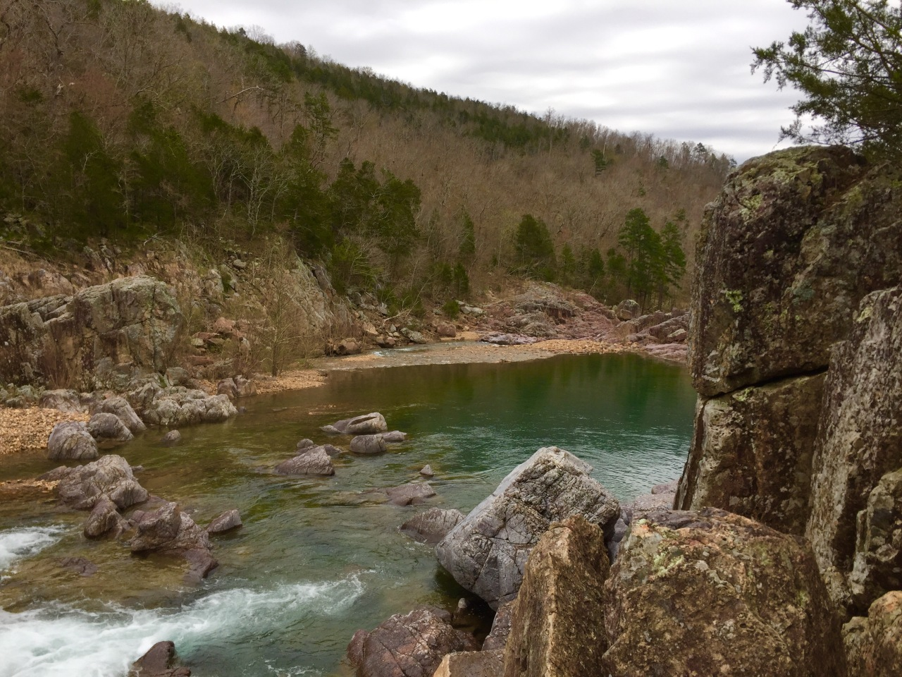 Johnson Shut Ins (36)
