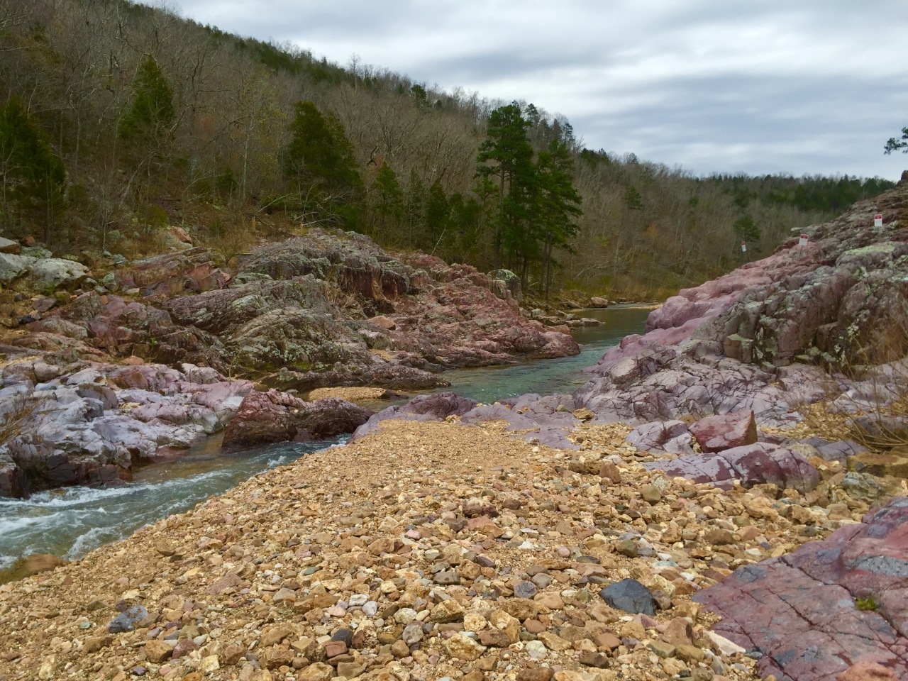 Johnson Shut Ins (53)