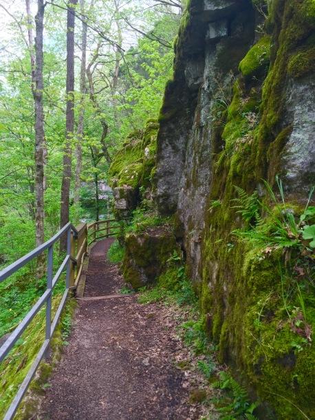 Mammoth Cave (16)