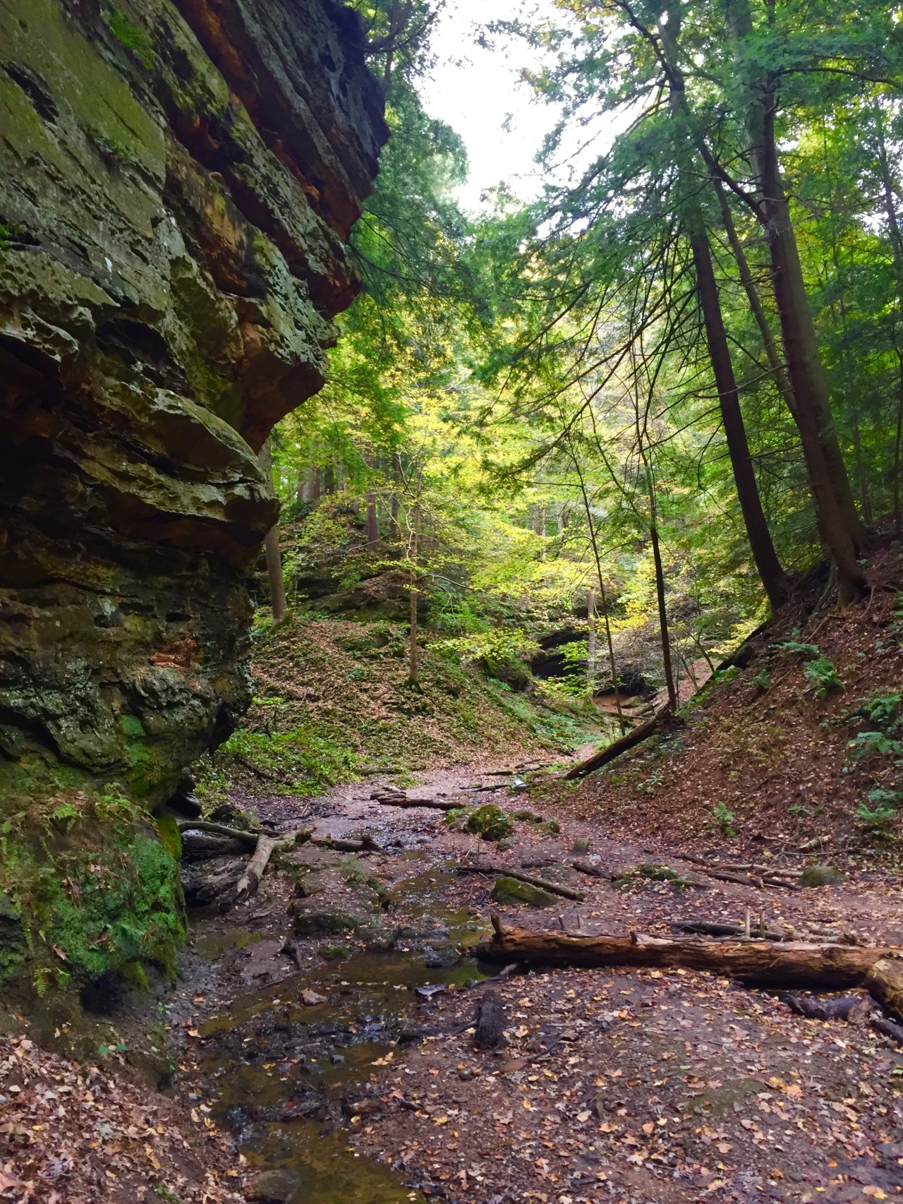 Shades State Park – Indiana