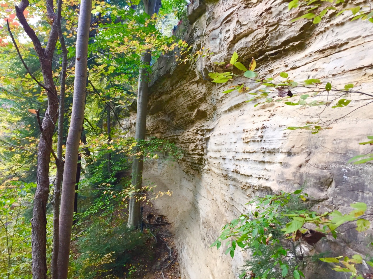 Pine Hills Nature Preserve –Indiana