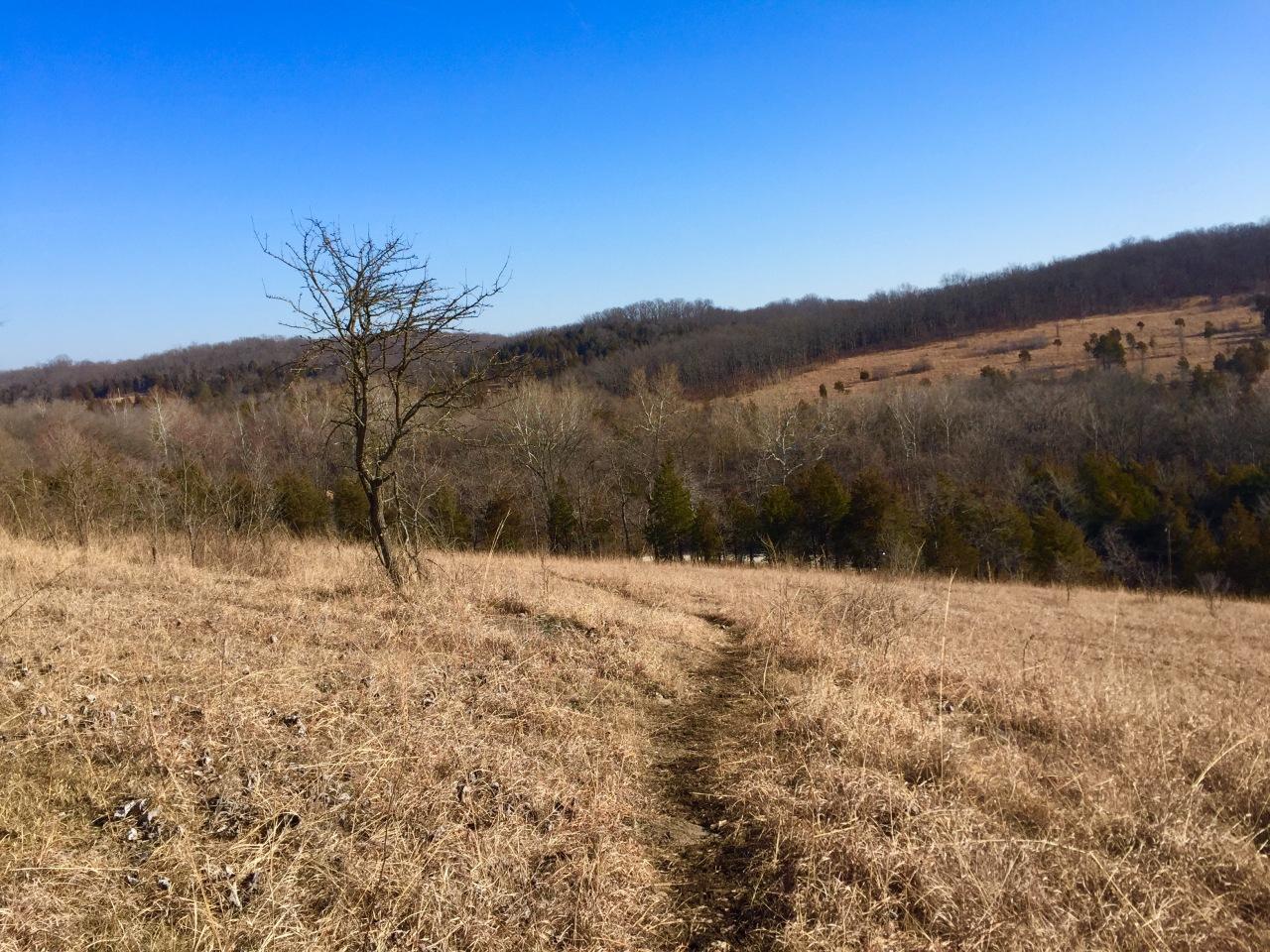 Victoria Glades Conservation Area –Missouri