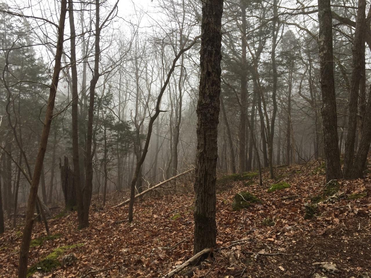 Chubb Trail-02