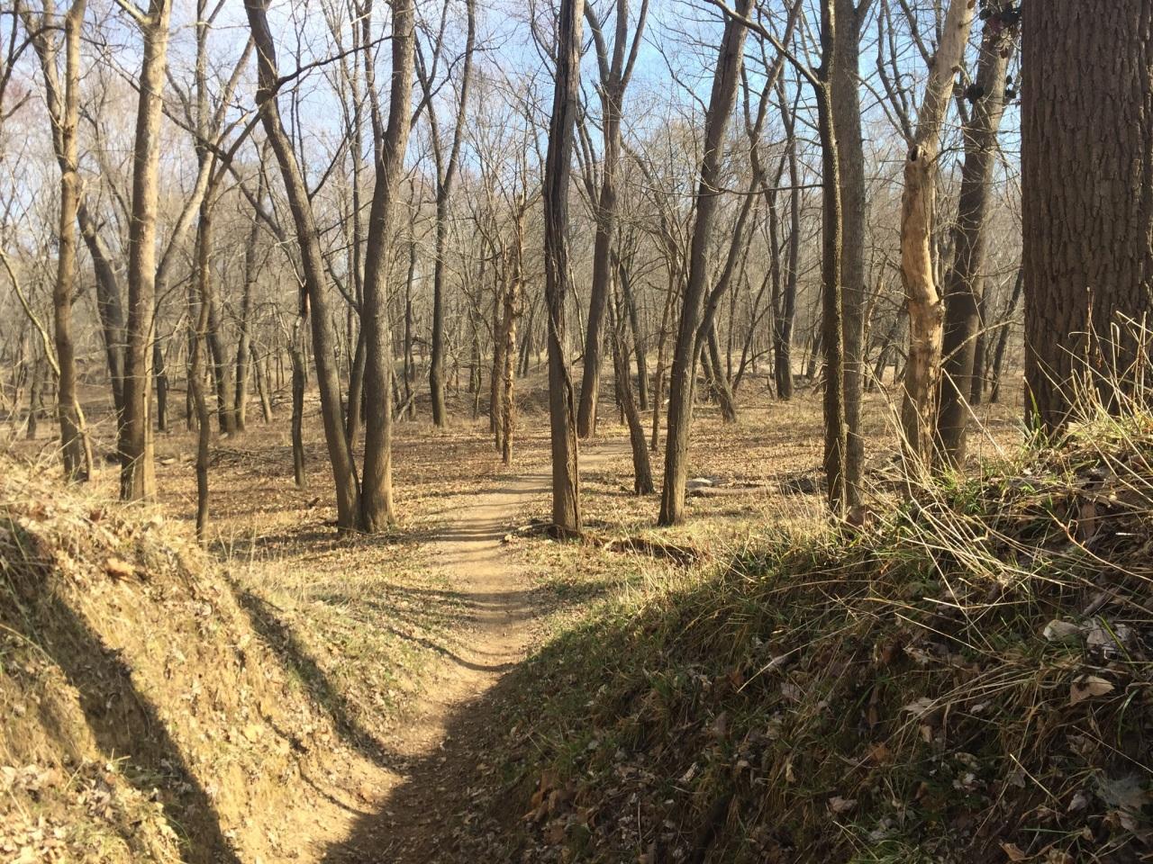 Chubb Trail-30