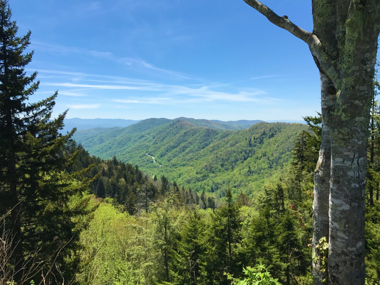 The Great Smoky Mountains – ClingmansDome