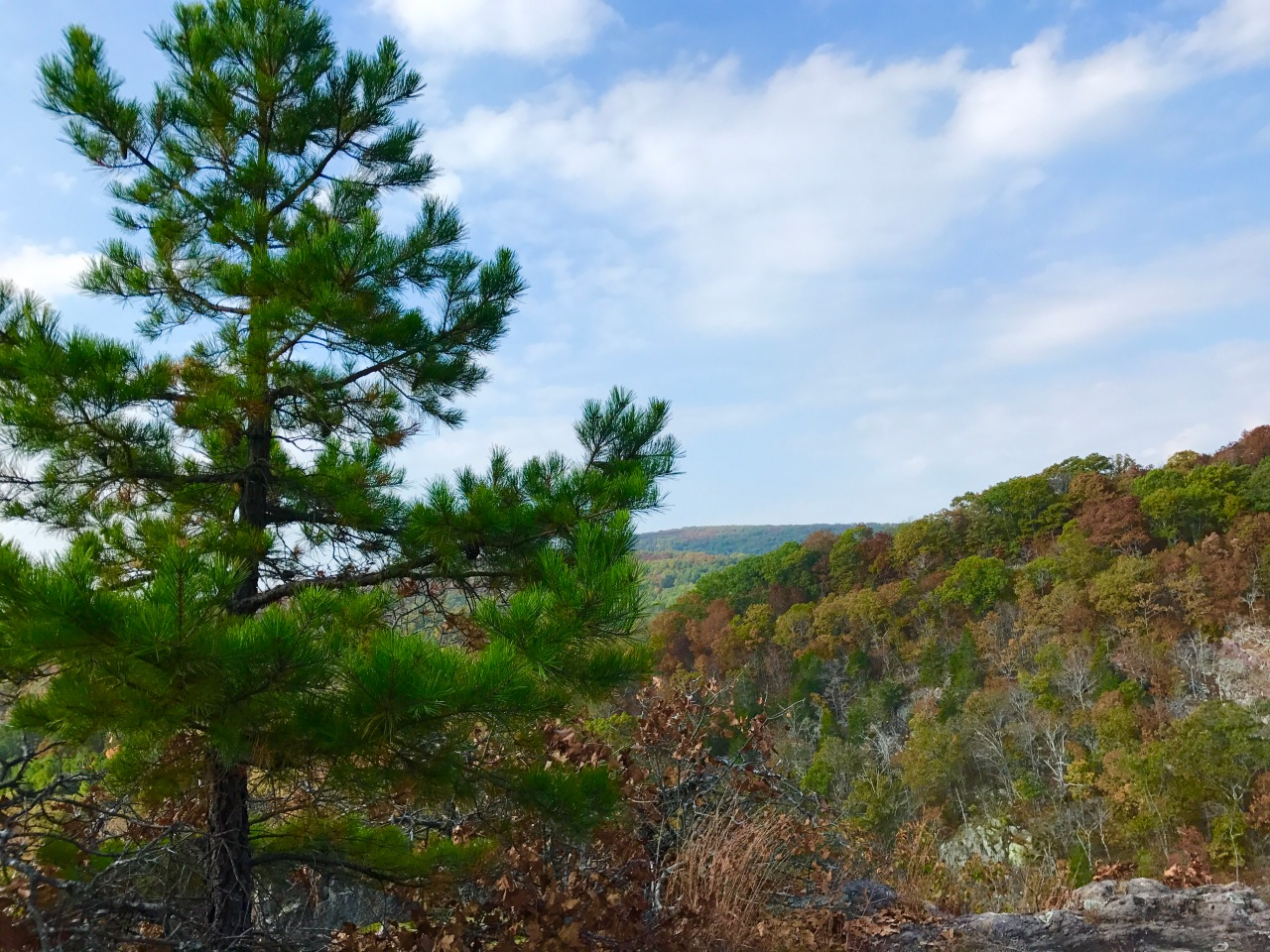 Ketcherside Mountain Conservation Area – Missouri