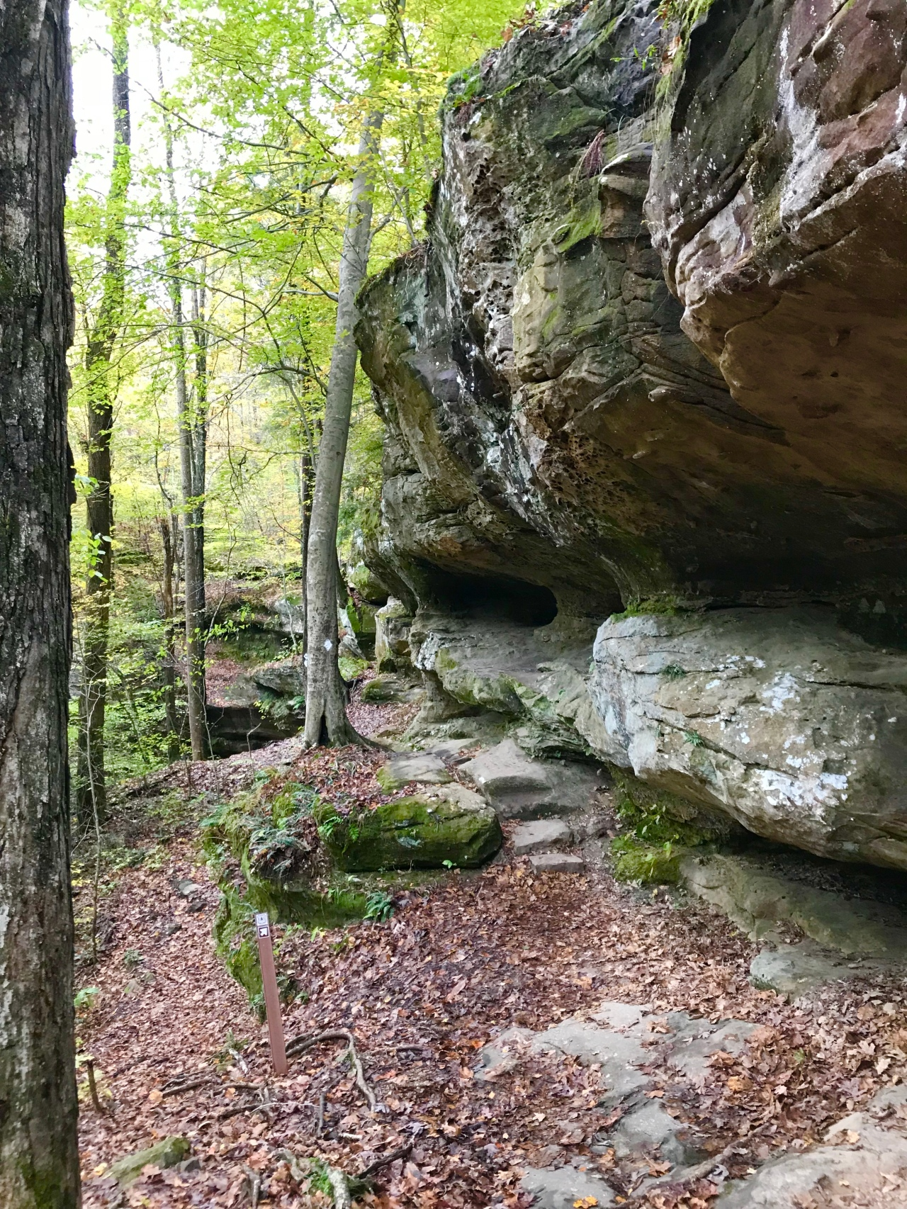 Hemlock Cliffs (10)