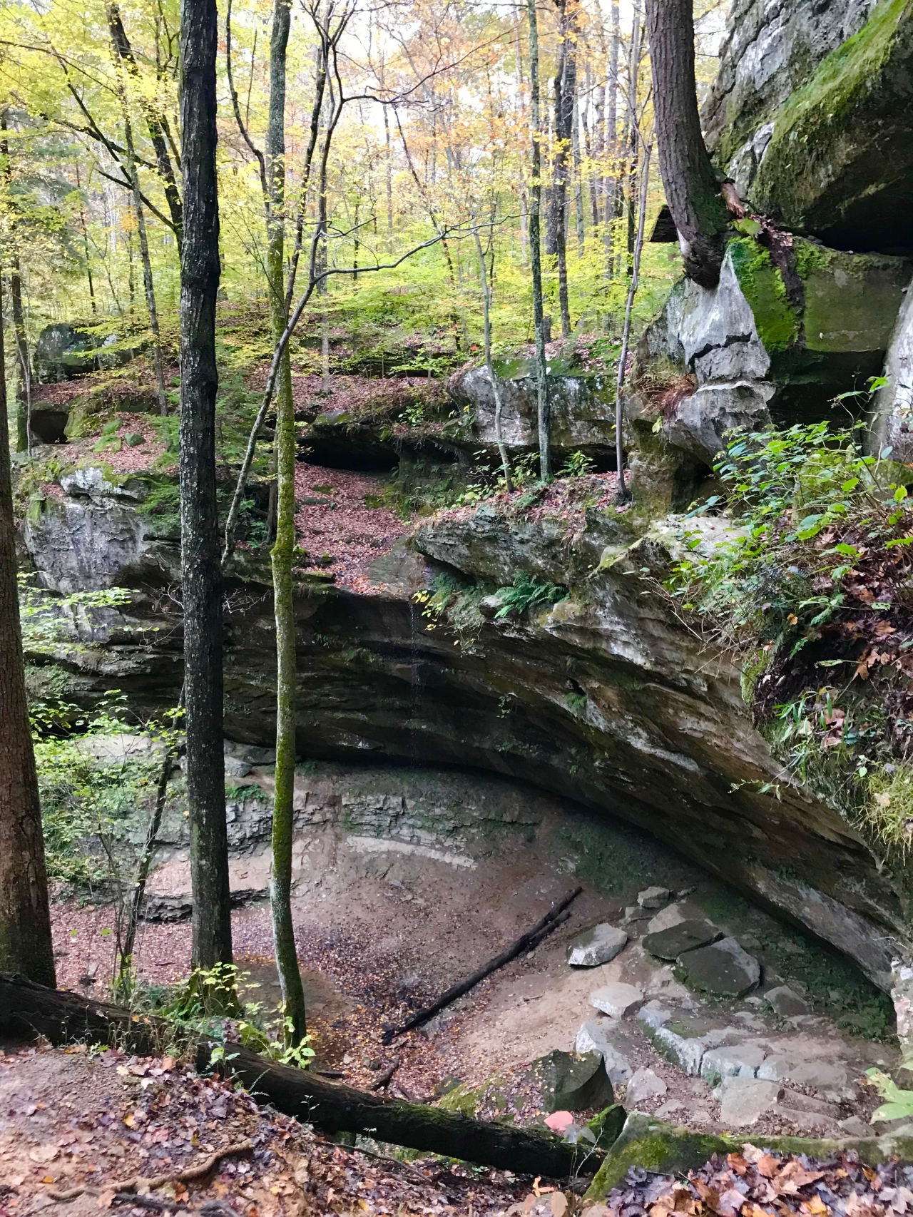 Hemlock Cliffs (18)