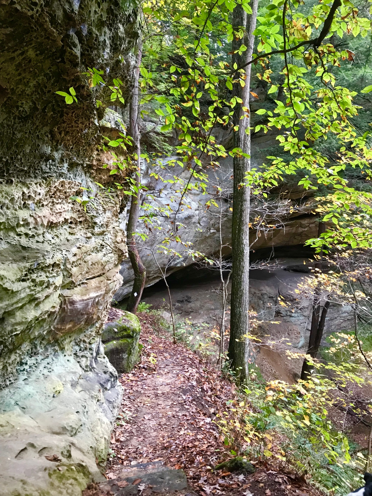 Hemlock Cliffs (38)