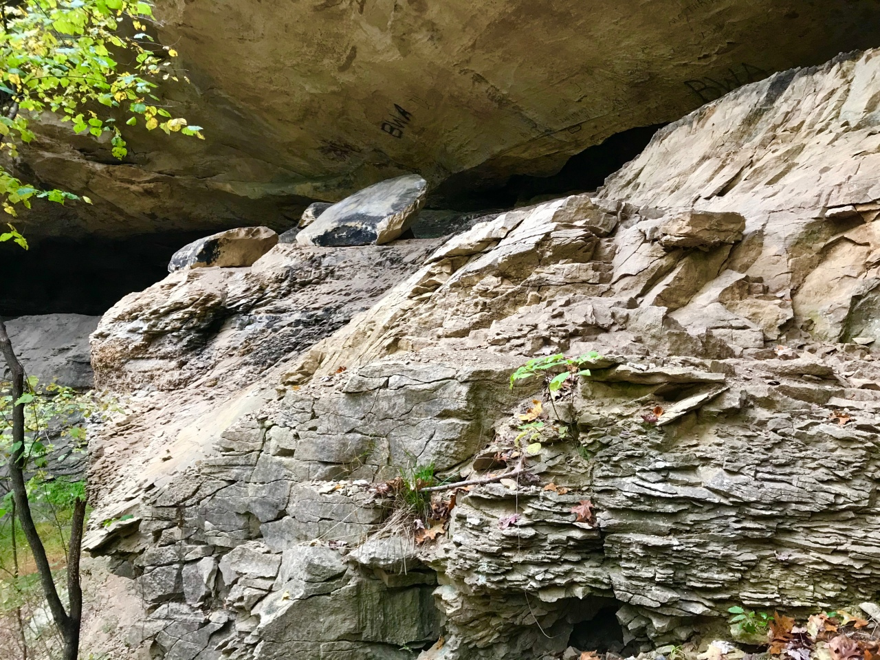 Hemlock Cliffs (51)