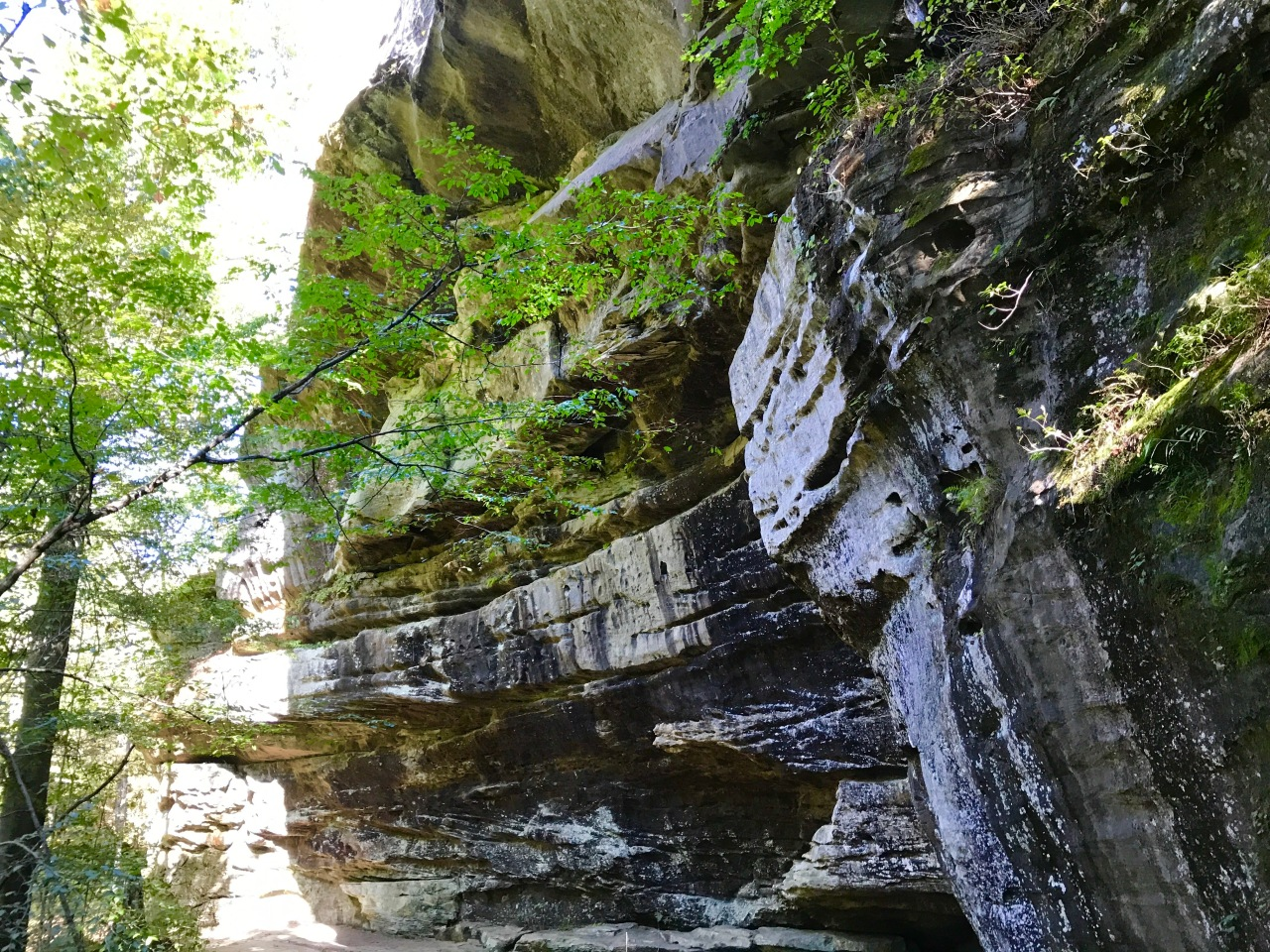 Rim Rock Trail – Illinois