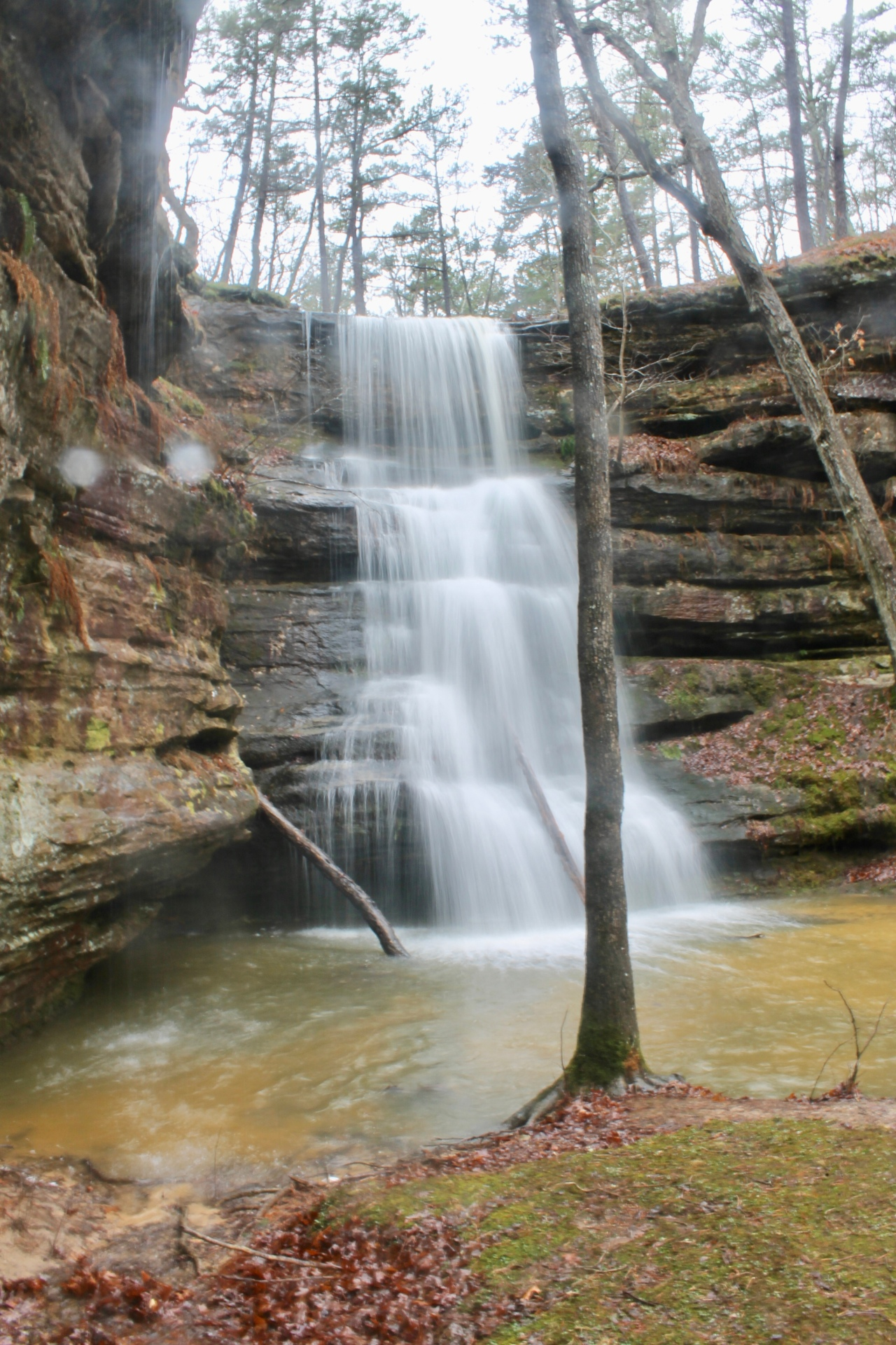 Hickory Canyons Natural Area – Missouri