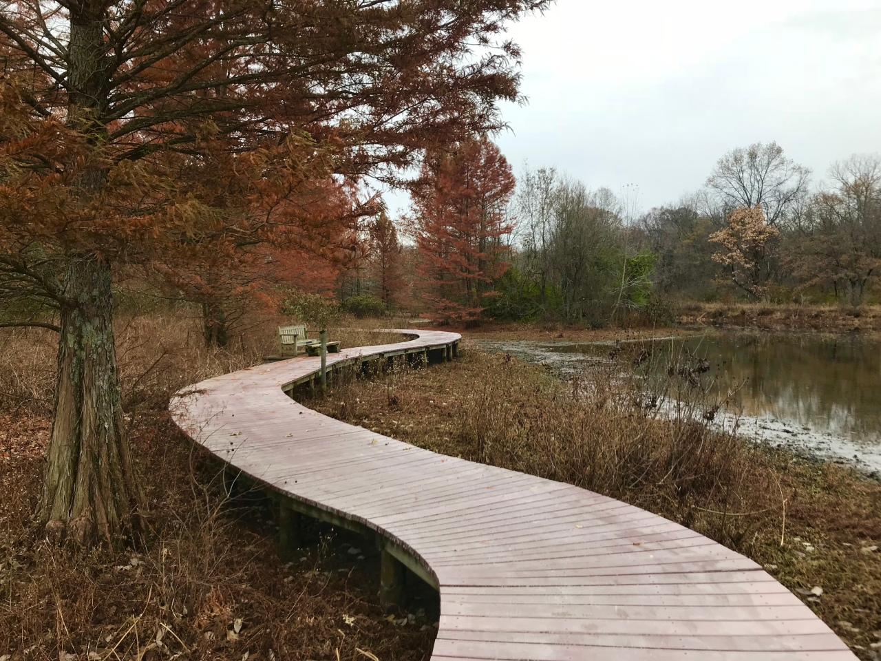 Shaw Nature Reserve –Missouri