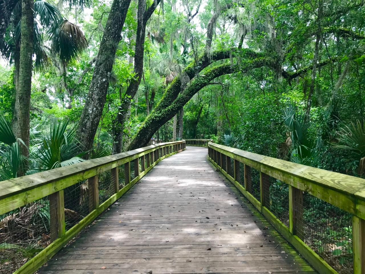 Blue Spring State Park –Florida