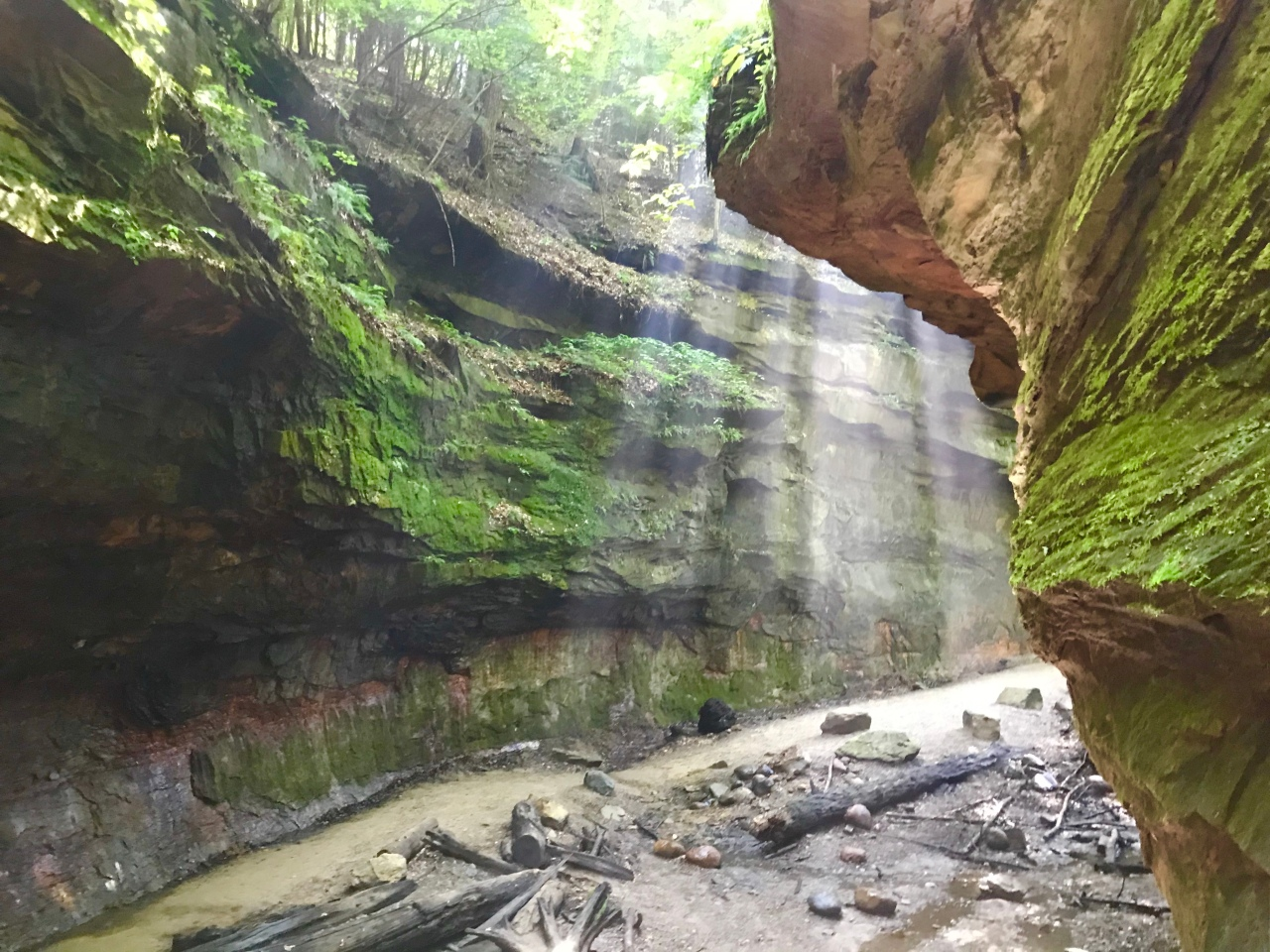Turkey Run State Park – Indiana