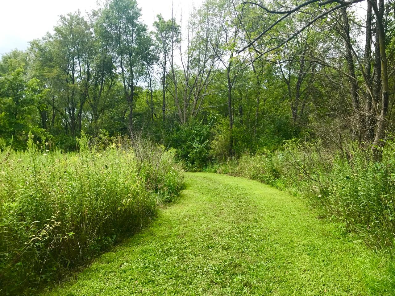 Kishwaukee Gorge North Forest Preserve –Illinois