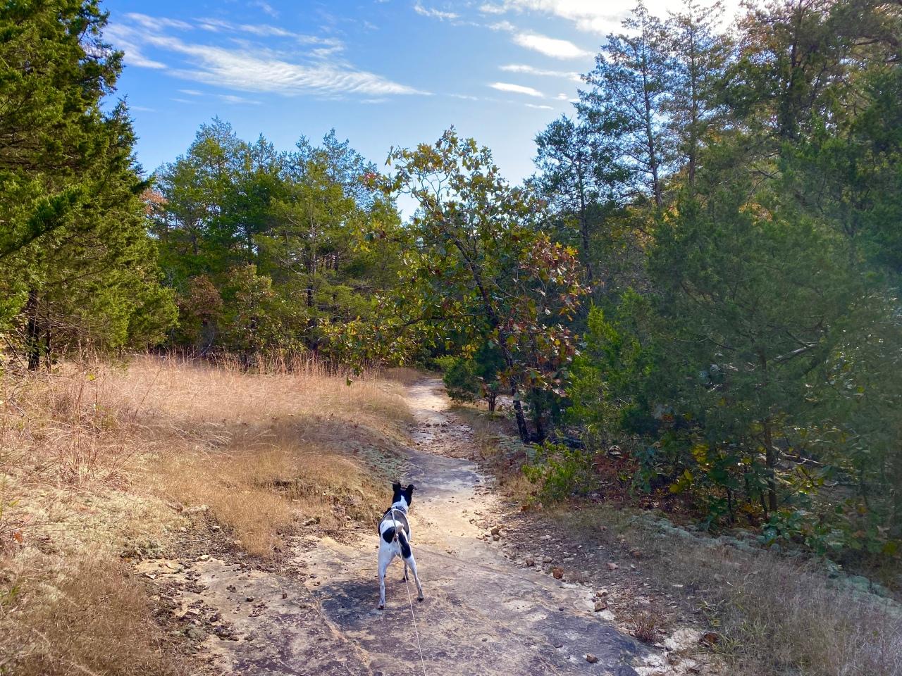 Don Robinson State Park –Missouri