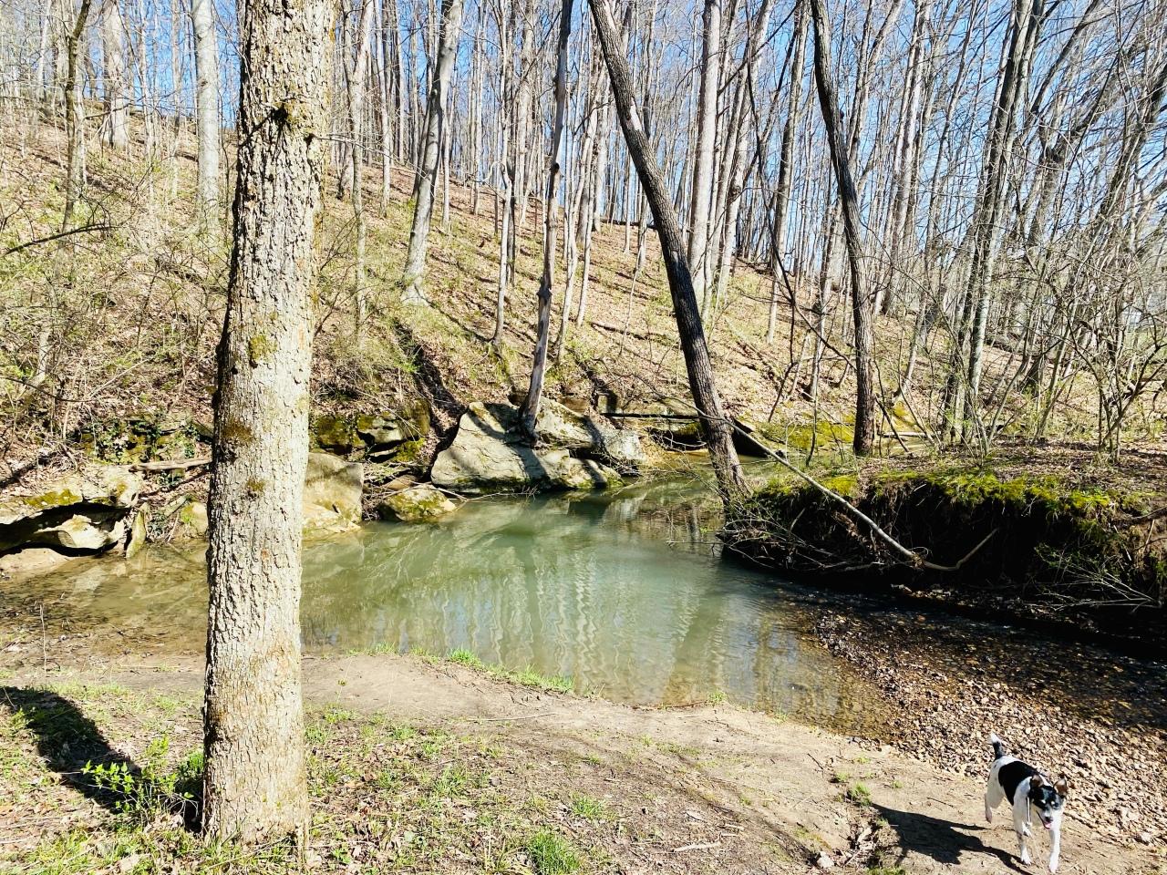 Strawberry Creek Nature Area –Missouri