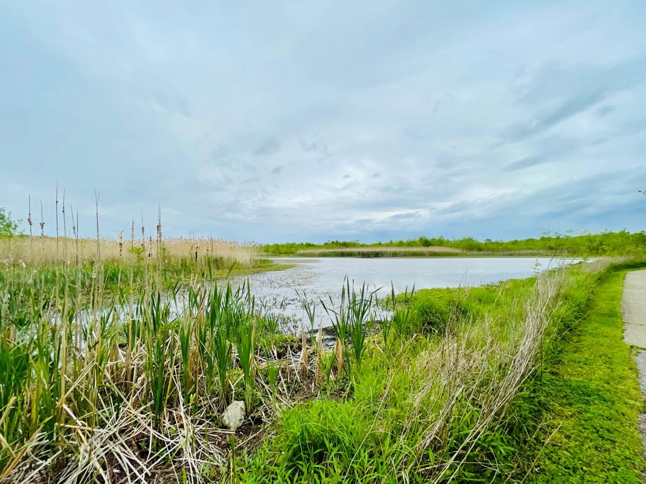 Silver Creek Nature Preserve –Illinois